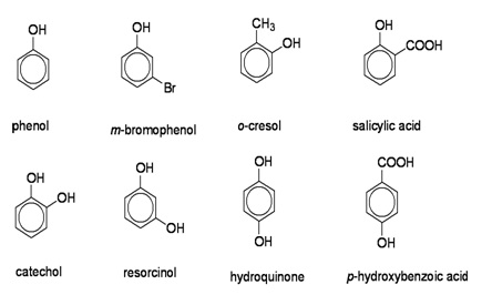 Image result for nomenclature of phenols